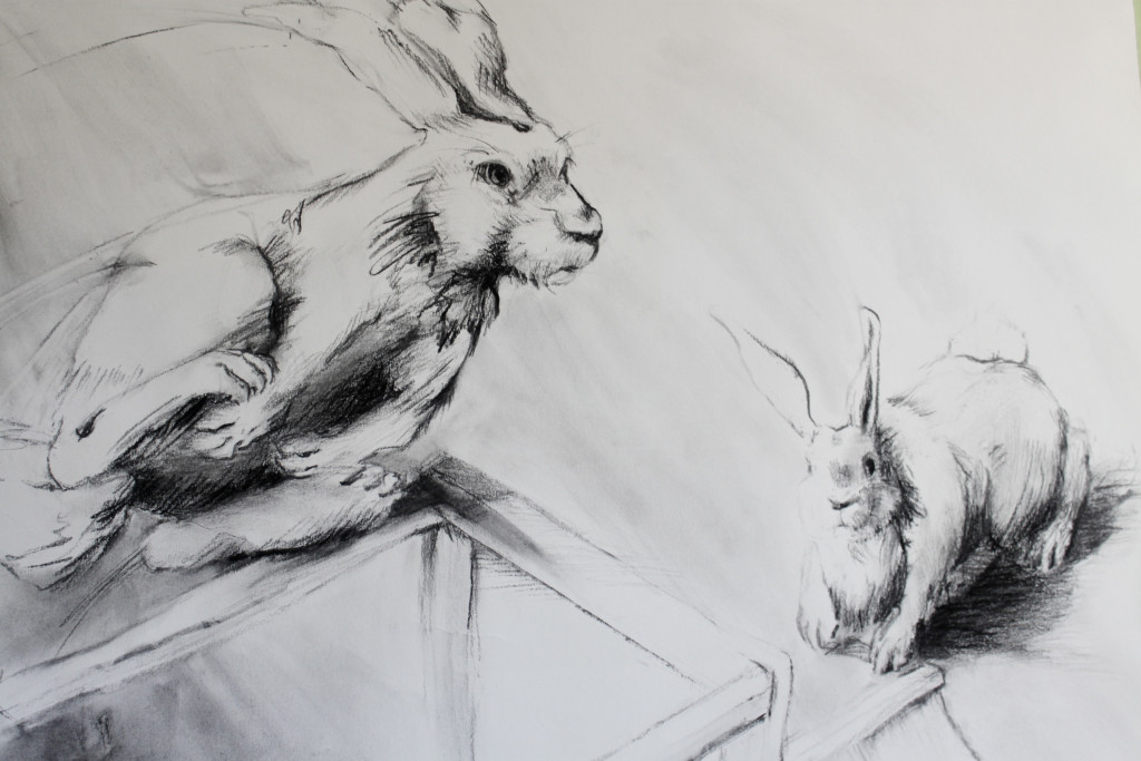 Rabbits-2_detail1 50x42 Charcoal 2016