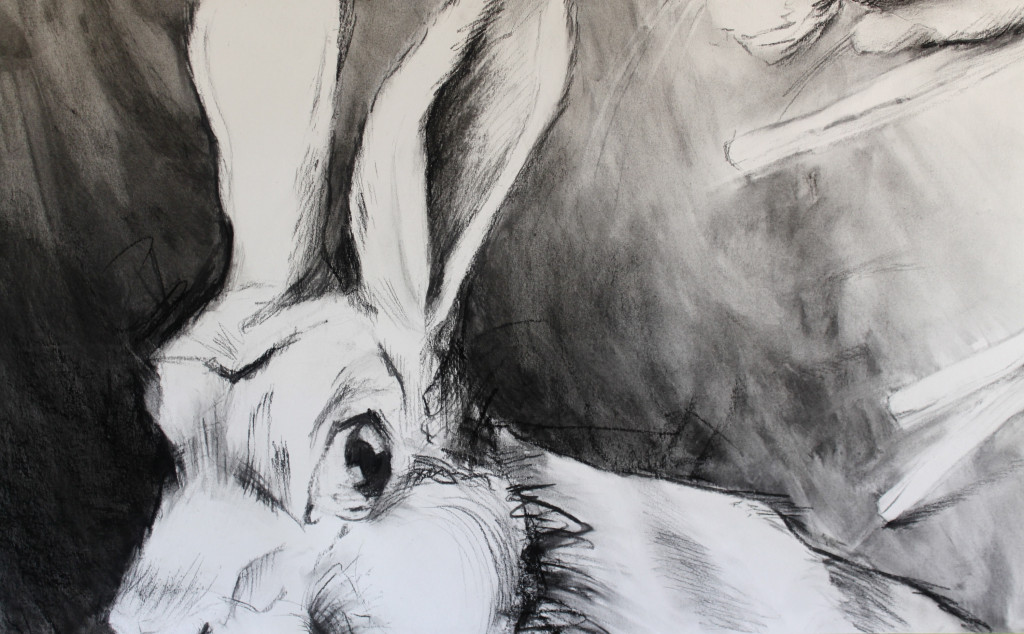 Rabbits-2_detail250x42 Charcoal 2016